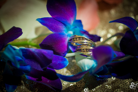 Rings and Orchids | St. Paul Wedding Photographer