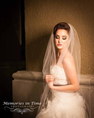Bridal Portrait   Twilight  Minneapolis Wedding Photography