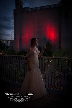 Minnesota Wedding Photographer | A Surly Brewing Company Wedding | Bridal Silhouettee