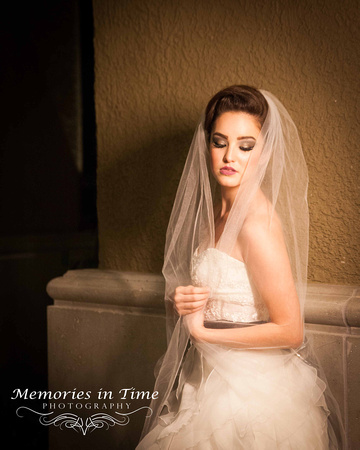 Bridal Portrait | Twilight| Minneapolis Wedding Photography